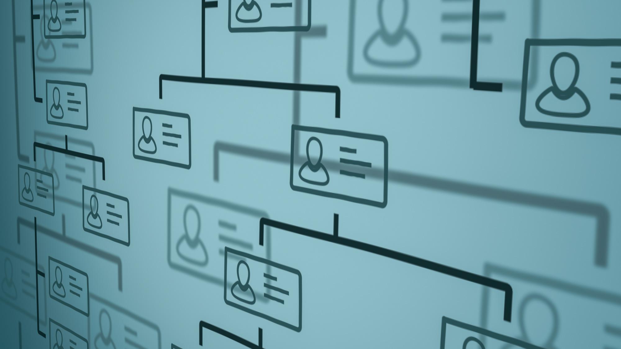 Organize - Management Consultant